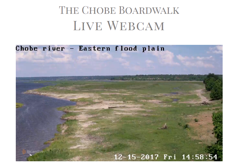 Chobe Live Webcam