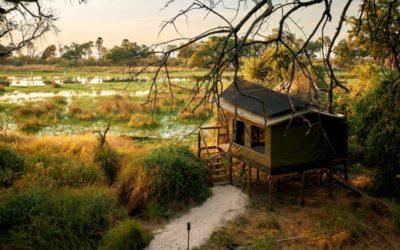 Oddballs Camp, Footsteps in Africa, Botswana, Okavango Delta, Chiefs Island