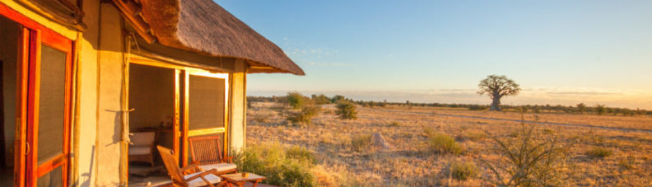 Christmas safari, festive season safari, Botswana safari specialists, Botswana safari holidays, Central Kalahari, Kalahari safari, Liquid Giraffe, Kwando Safaris, luxury safari lodges, luxury safari camps