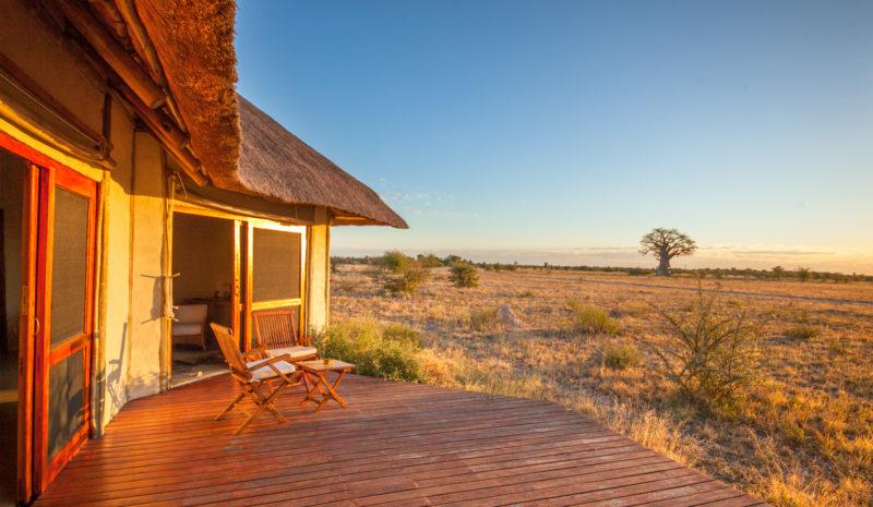 Christmas safari, festive season safari, Botswana safari specialists, Botswana safari holidays, Central Kalahari, Kalahari safari, Liquid Giraffe, Kwando Safaris, luxury safari lodges, luxury safari camps