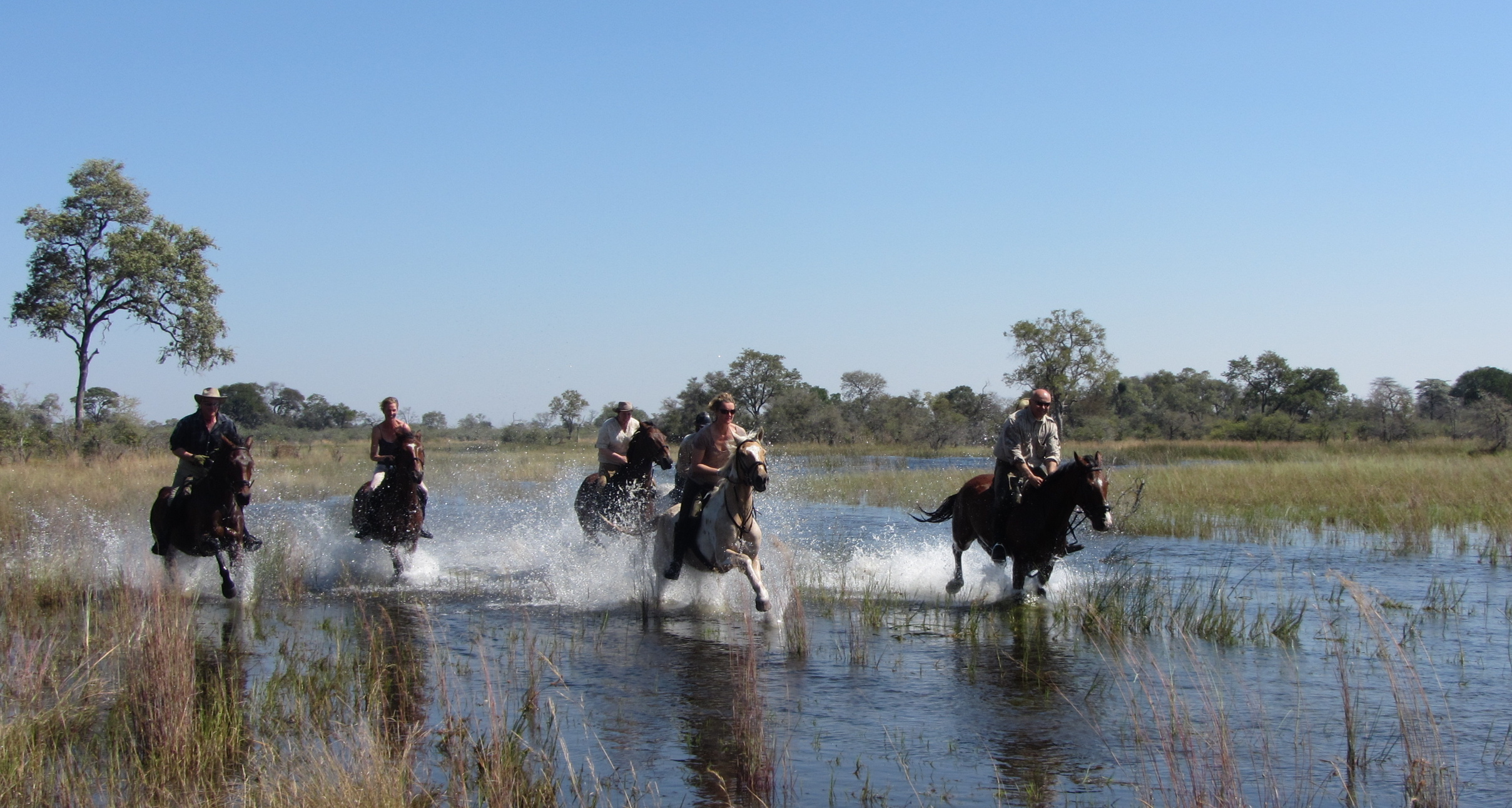 Liquid Giraffe, Botswana Horse Riding Safari, Botswana Safari, Wildlife Safari, Adventure Travel