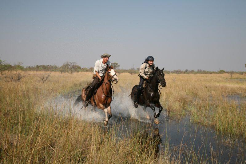 Liquid Giraffe, Botswana Horse Riding Safari, Botswana Safari, Wildlife Safari, Adventure Travel