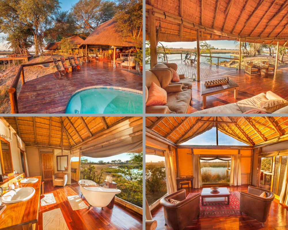Liquid Giraffe, Botswana, Okavango Delta, Moremi Game Reserve, Dry Season Safari, Botswana Camps, Safari Package, Safari Experts, Botswana Safari, African Safari