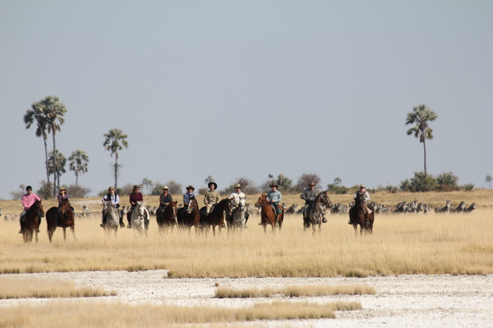 Botswana drought, Botswana, Botswana Camps, Botswana Safari, Dry Season Safari, Liquid Giraffe, Okavango Delta, Okavango Delta Camps