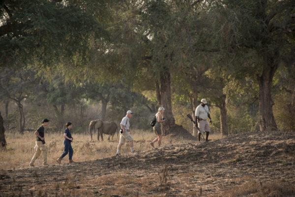 © Zambezi Expeditions
