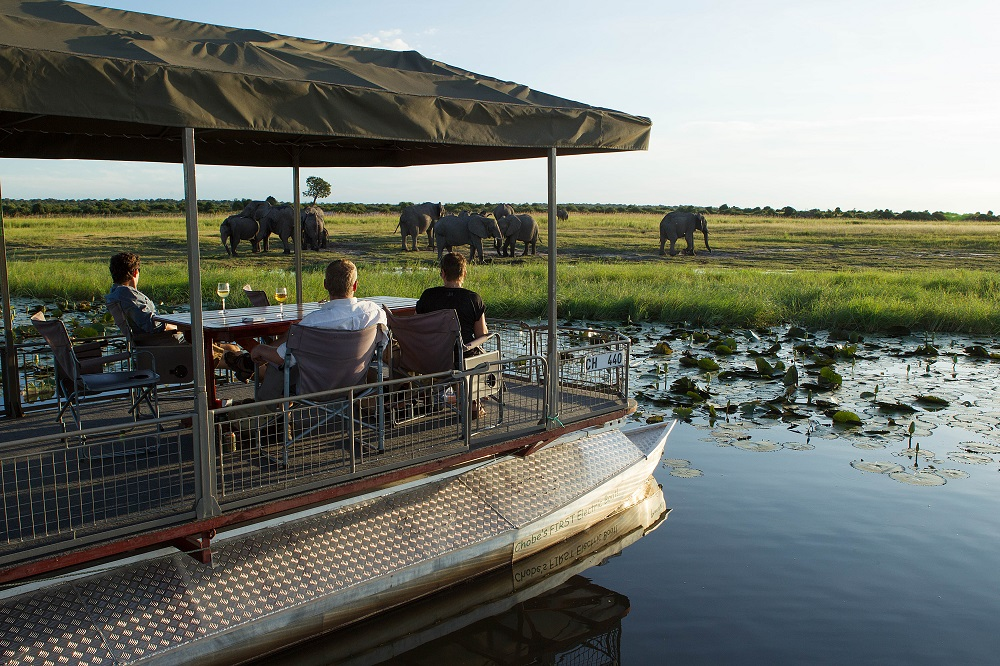 Liquid Giraffe, Wet Season Safari, Summer Wet Season Safari, Southern Africa Safari, Chobe National Park, Namib-Nauklaft