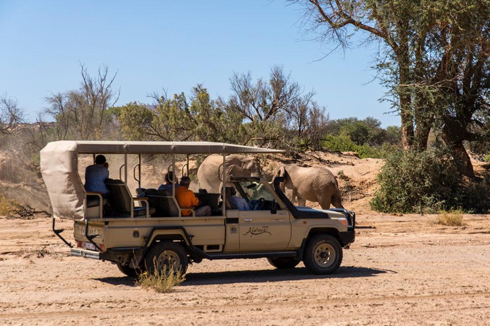 Liquid Giraffe, Botswana Safari, African Safari, Southern Africa Safari, Best Safari, 2019 Best Safari