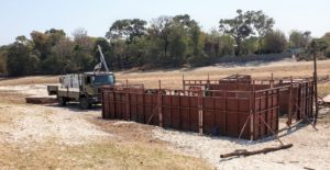 Relocating the Thamalakane Hippos, Hippos Okavango Delta, Liquid Giraffe, Hippo Baby Fiona Fund