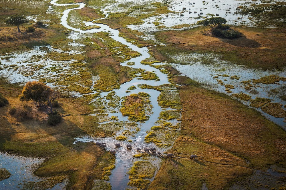 Liquid Giraffe, Okavango Delta Floods, Okavango Delta Safari Camp Opens, National Geographic