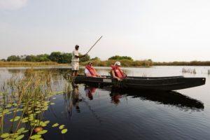 Liquid Giraffe, Botswana Safari, Botswana Safari Camps, Okavango Delta, Mokoro Safari